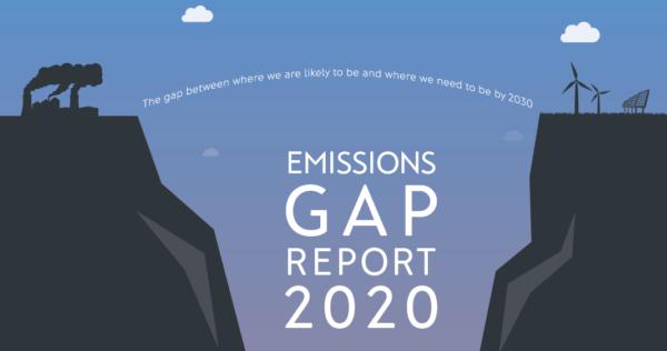 Gap report 2020