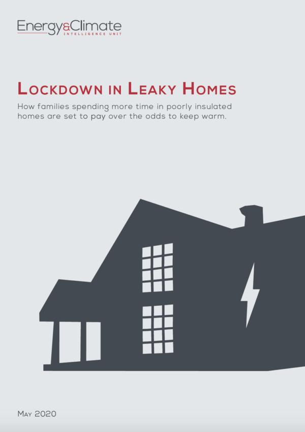 Lockdown in Leaky Homes Report