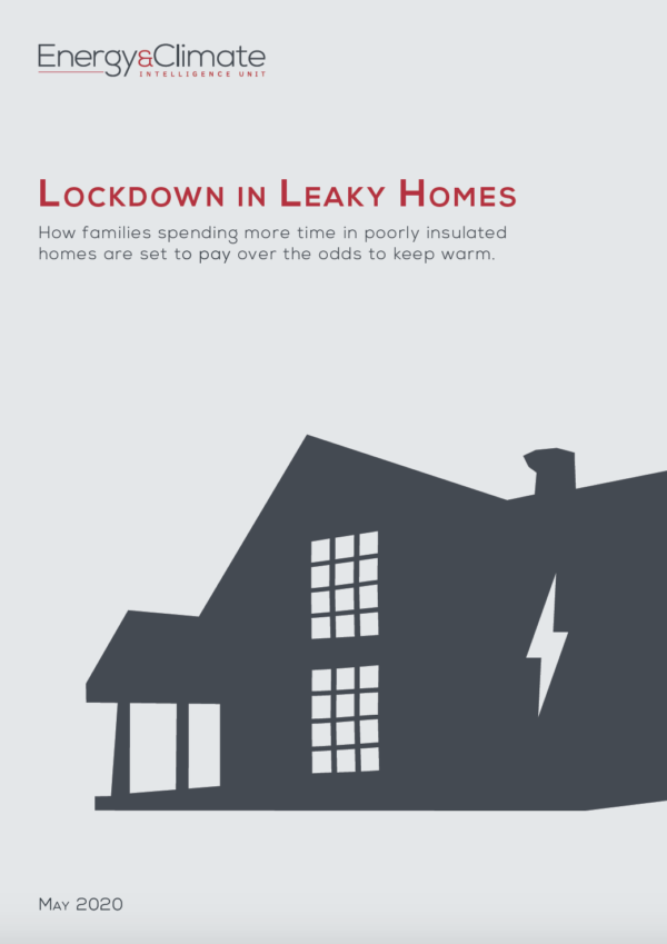 Lockdown in Leaky Homes Report