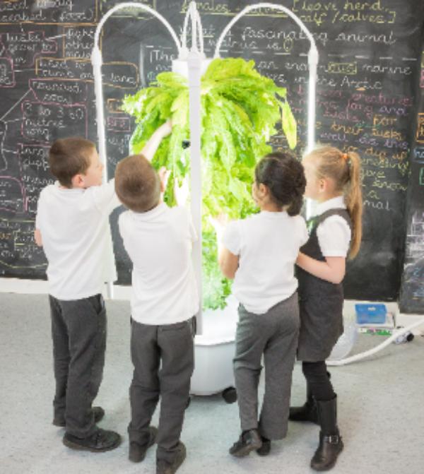 Children build a growing tower