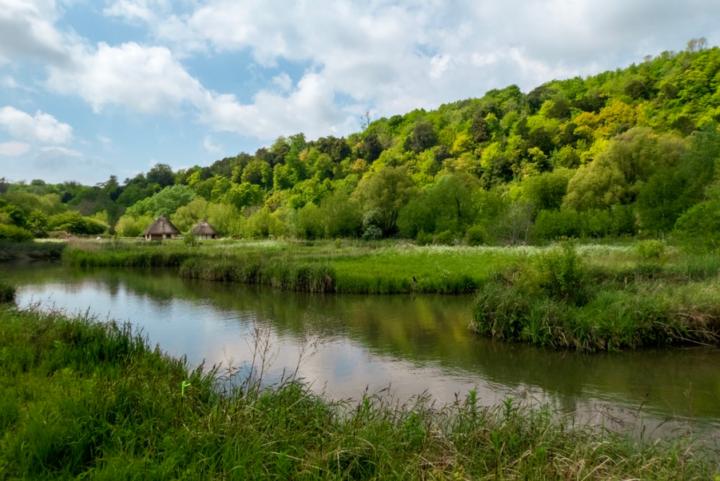 Wetlands in Arundel, Surrey, UK