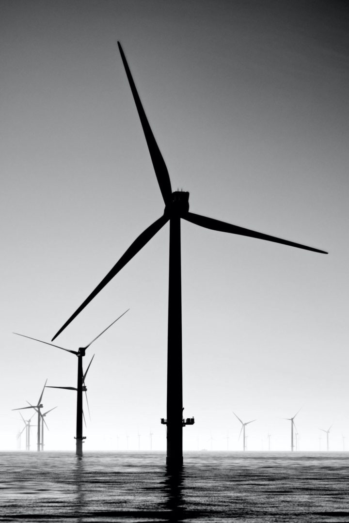 Black and white picture of an offshore wind farm in Newhaven