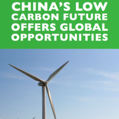 China's Low Carbon Future Offers Global Opportunities
