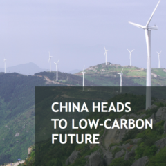 China's Low-carbon Policy and Development