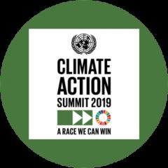 Comment on UN Climate Action Summit