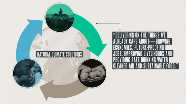 Natural climate solutions deliver on the things we already care about