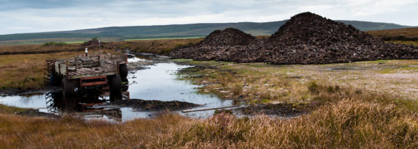 Preserving peat emerges as a no-brainer from the IPCC report. Image: Korz19