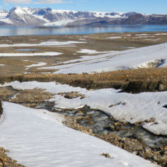Comment on IPCC Oceans and Cryosphere report