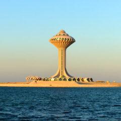 COP24: Saudi Arabia takes off its trousers