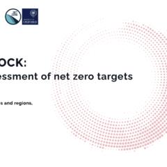 Taking stock: A global assessment of net zero targets