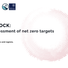 Taking stock: A global assessment of net zero targets